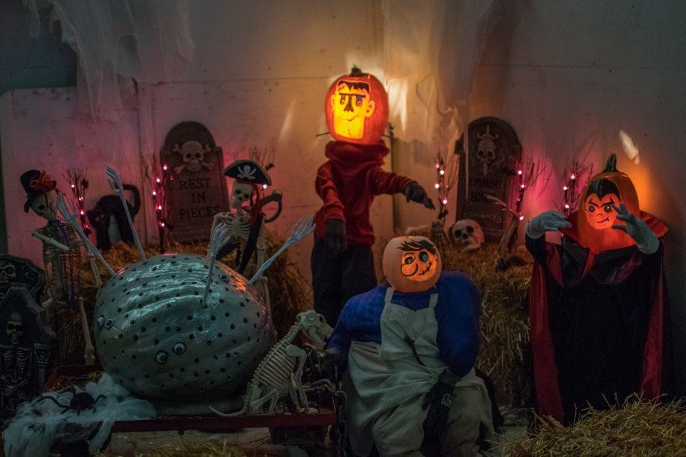 pumpkins - Giant Pumpkin Carve